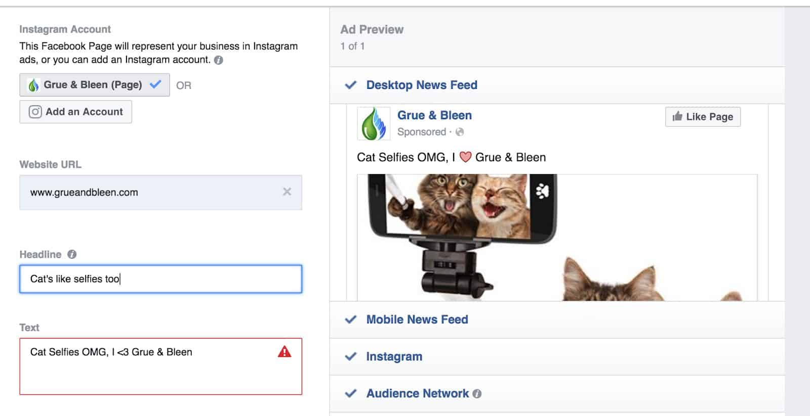 Create Your Facebook Ad Copy - Cat Selfies
